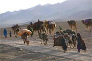 Nomadic Tribes of Afghanistan